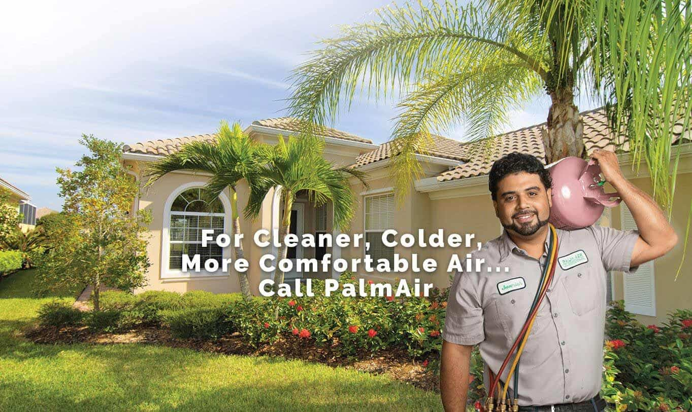 Palm Air for cooler, cleaner more comfortable air